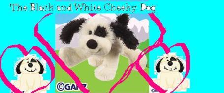b-w-cheeky-dog.jpg
